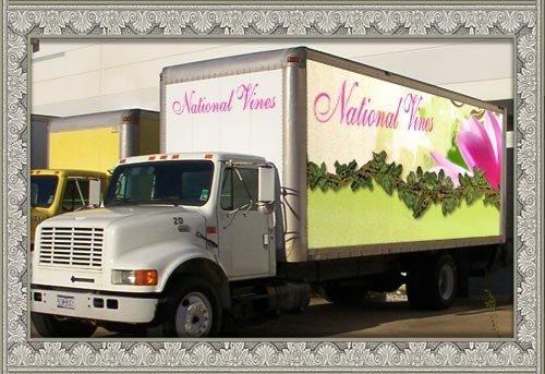 National Vines Truck